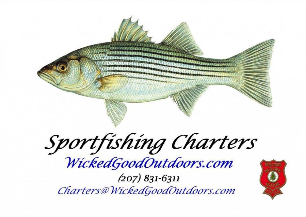 WickedGoodOutdoors Sportfishing Charters LOGO.jpg