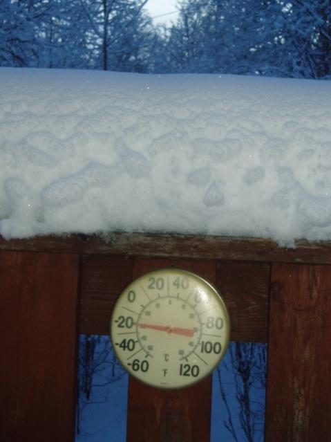 20 below 2012.jpg