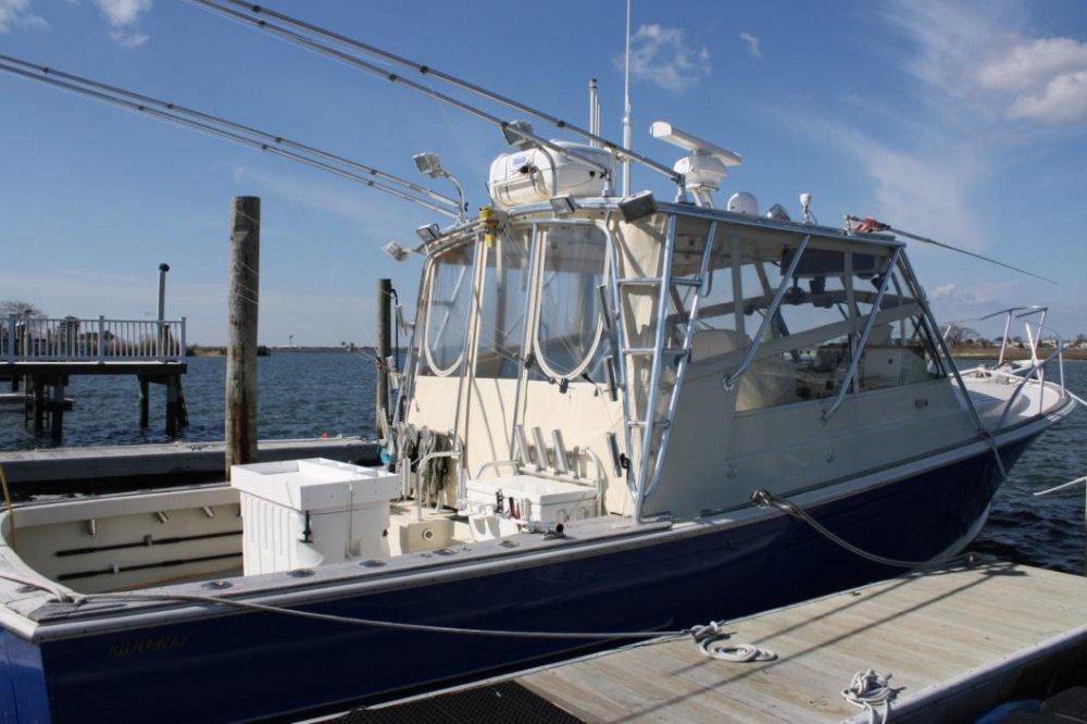Starboard Profile.jpg