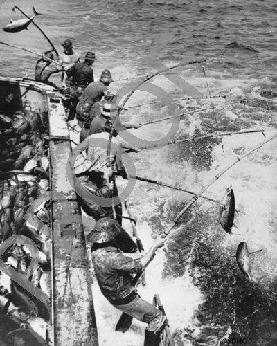 Tuna-fishermen-pole-fishing-nd-OP-17134-3894.jpg
