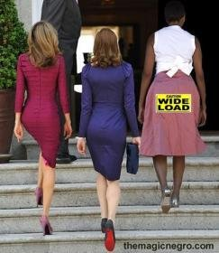Fat-ass-Michelle-Obama-38490266040.jpg