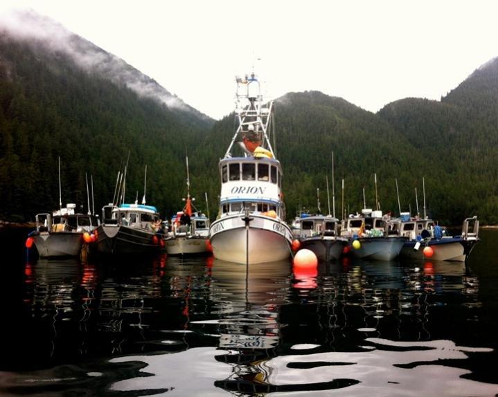 # 2- Photo by Nathan Widmann_Photo Taken in Lake Bay, Prince William Sound 2.jpg