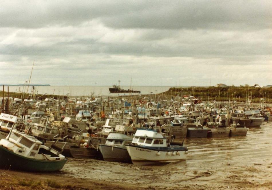 dillingham dry harbor.jpg
