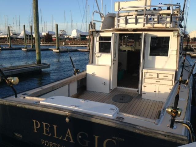 pelagic-deck2.jpg