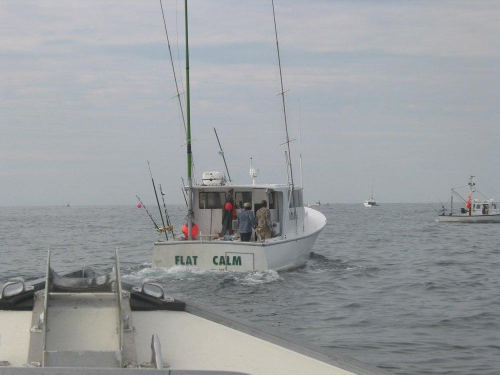 Boat fish pics 088.jpg