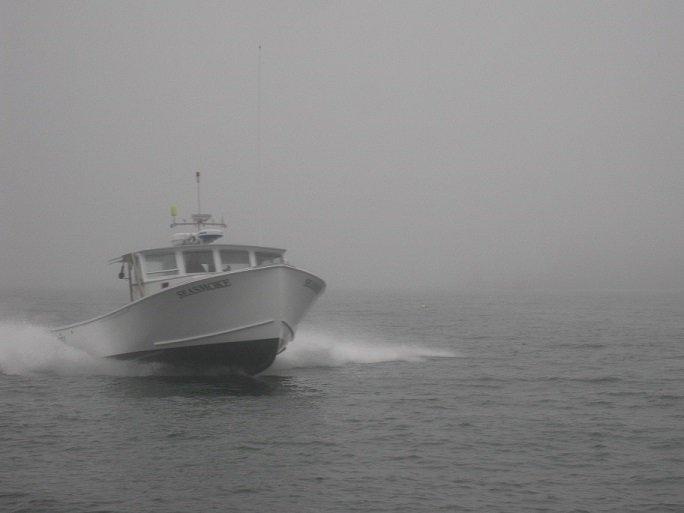 Sea Smoke cruise.jpg
